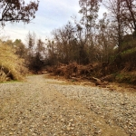 Gravel creek bed/road/trail on the south side east of 505.